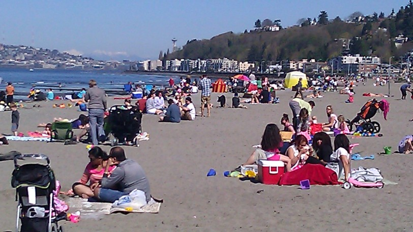 Everyone was out at the beach!