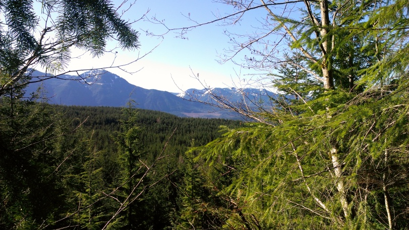 Amazing views from the ridge