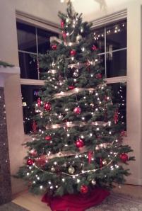 2013-12-07 21.18.09 tree at home