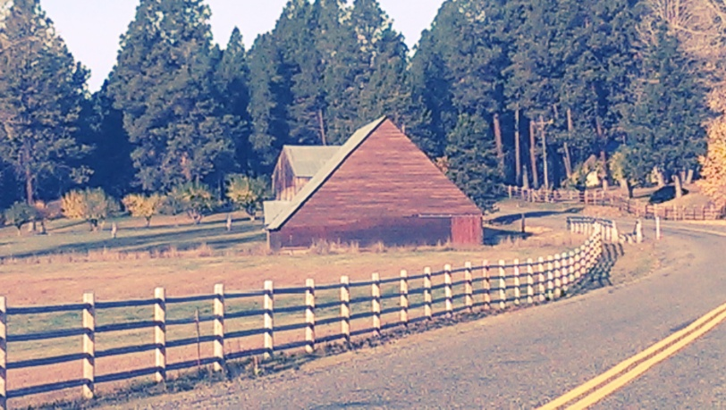 Farms along Teanaway Road.