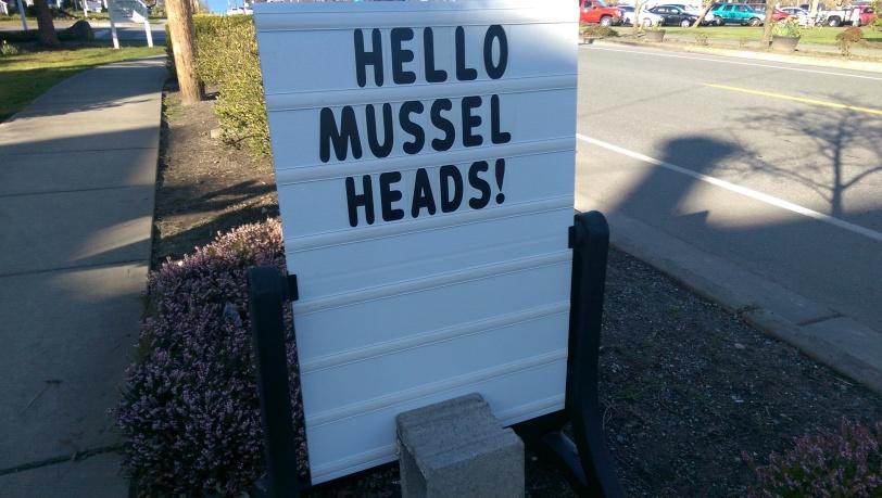 Hello Musselheads